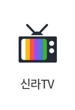 신라 TV